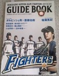 official guidebook